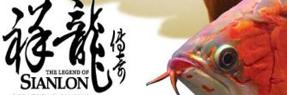 乐平水族批发市场|乐平水族馆|乐平龙鱼